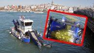 DYT İstanbul'da Deniz Yüzeyinden 140 Kamyon Çöp Topladı