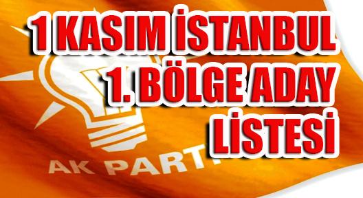 AK Parti İstanbul 1. Bölge Aday Listesi